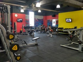 Sutos Gold Gym